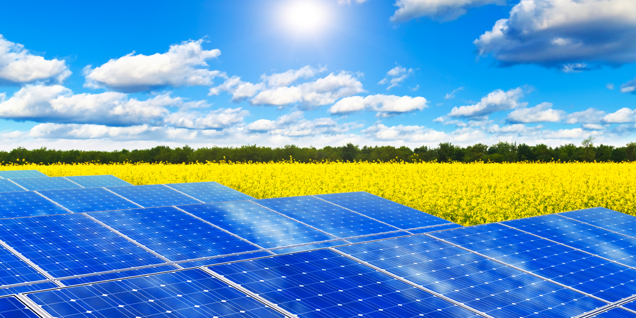 What are Solar Farms?