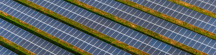 solar farm profits